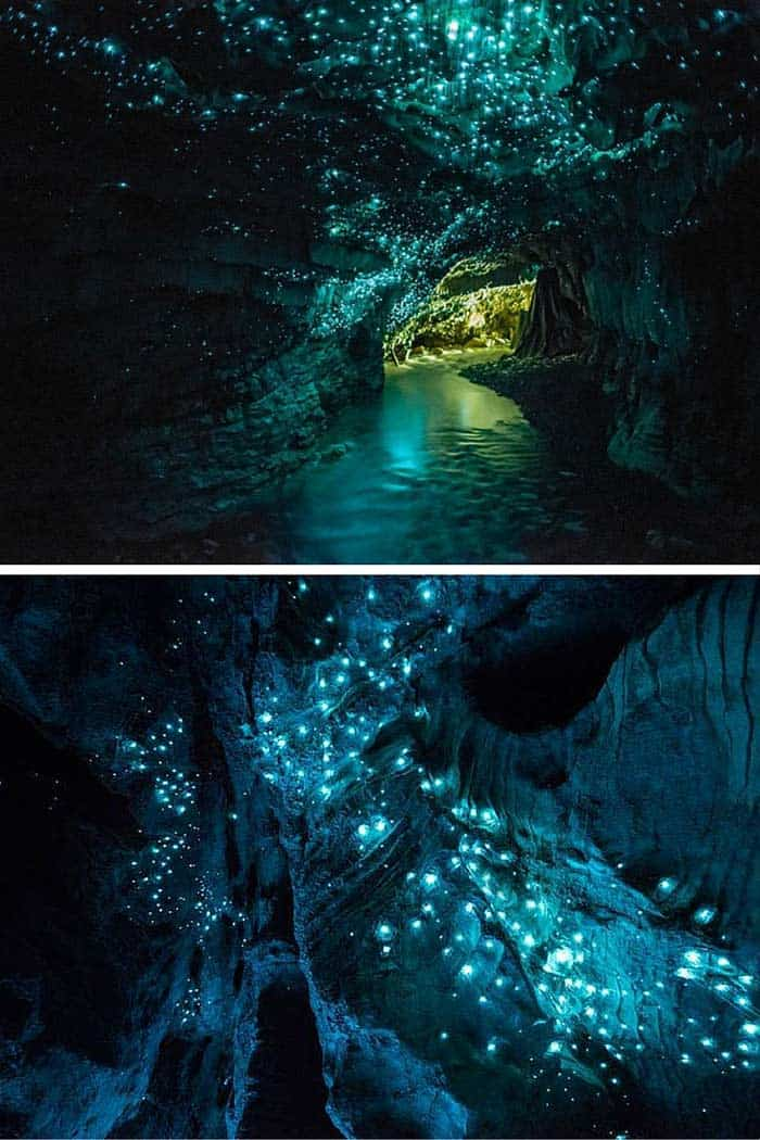 Glow worm caves in New Zealand! Click through to see 20 more UNREAL travel destinations!