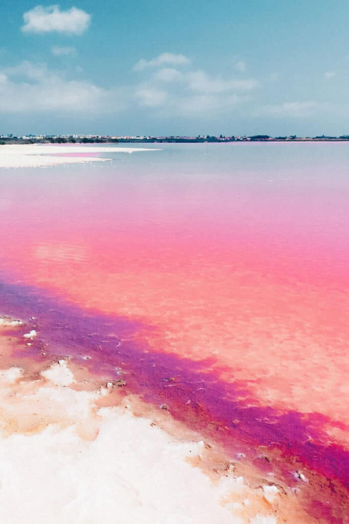 Laguna Salada de Torrevieja Spain! The water is pink due to a special type of algae. 20 UNREAL Travel Destinations you have to see!! Click through to read the full post!