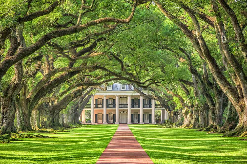 Plantation Homes in New Orleans!