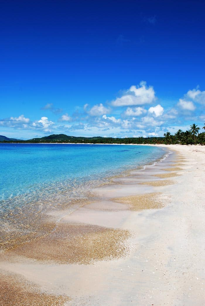 The Best Beach in Puerto Rico - Vieques. Puerto Rico is one of the easiest places to get to from the United States. Click through to see what you can't miss while visiting the island!