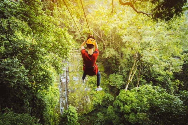 Rainforest zip line