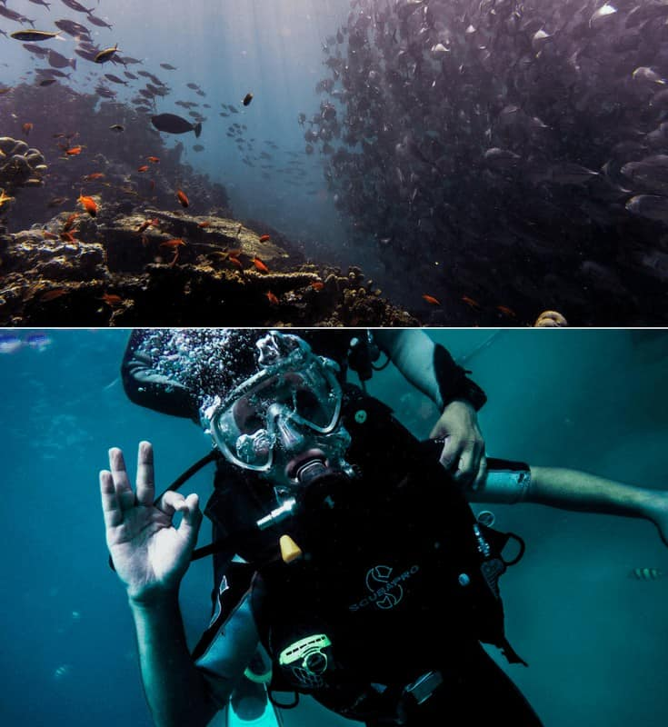 Top 10 Things to do in Puerto Rico, including going scuba diving! Puerto Rico is one of the easiest places to get to from the United States as well as one of the most beautiful! Click through to see what you can't miss while visiting the island! #puertorico #avenlylane #travel #traveltips #avenlylanetravel #usa #beaches #islands #beautifulplaces #cities #travelinspiration | www.avenlylanetravel.com