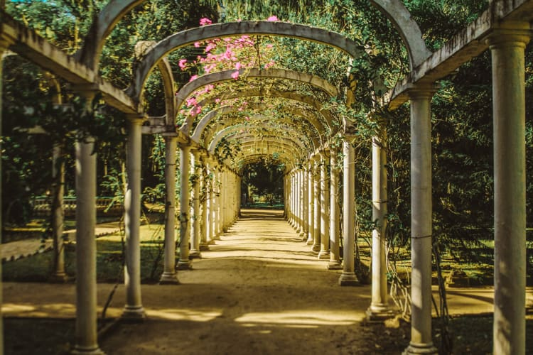 Jardim Botanico (Botanical Garden)