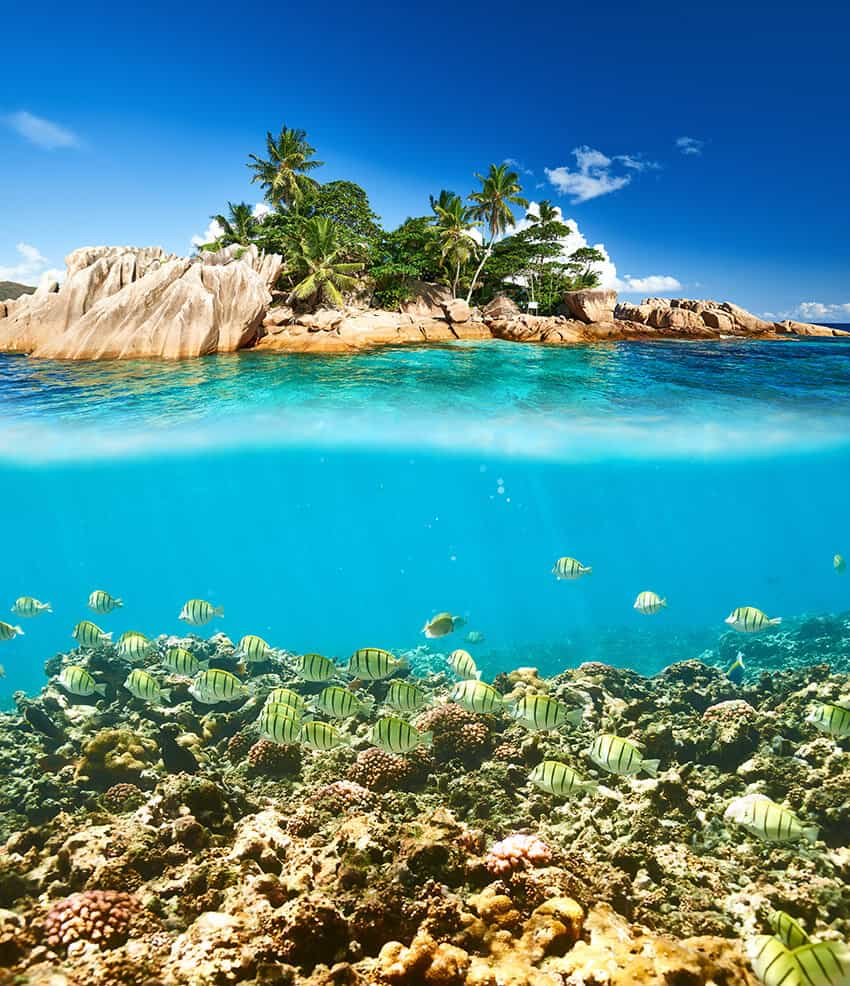 Snorkeling in the Seychelles. Seychelles travel guide.