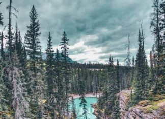 Best things to do in Alberta Canada!