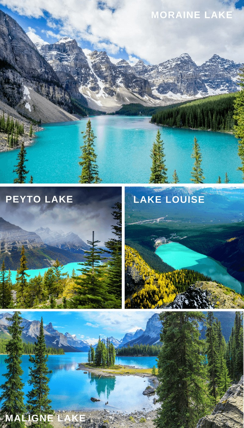 Turquoise Lakes in Alberta Canada