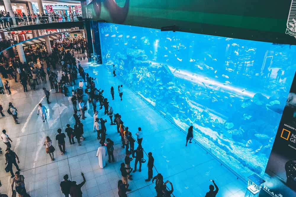 Dubai Mall Aquarium | The Dubai Mall - The world's largest shopping mall