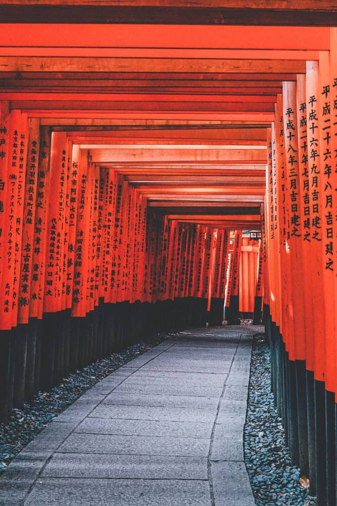 Fushimi Inari Shrine! 10 Best Things to do in Kyoto, Japan. One of the best towns in Japan. #Kyoto #Japan #avenlylanetravel #traveltips #asia #japantravel