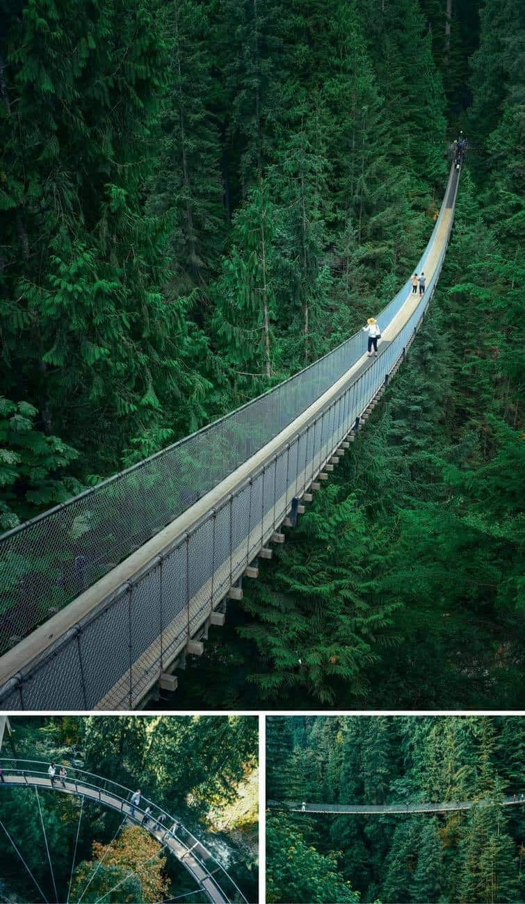 Capilano Suspension Bridge in Vancouver! Cool Things to Do in Vancouver, BC (Canada)