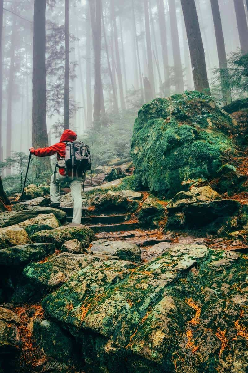 Hikes in Grouse Mountain, Vancouver Canada! Cool Things to Do in Vancouver, BC #Canada #Travel