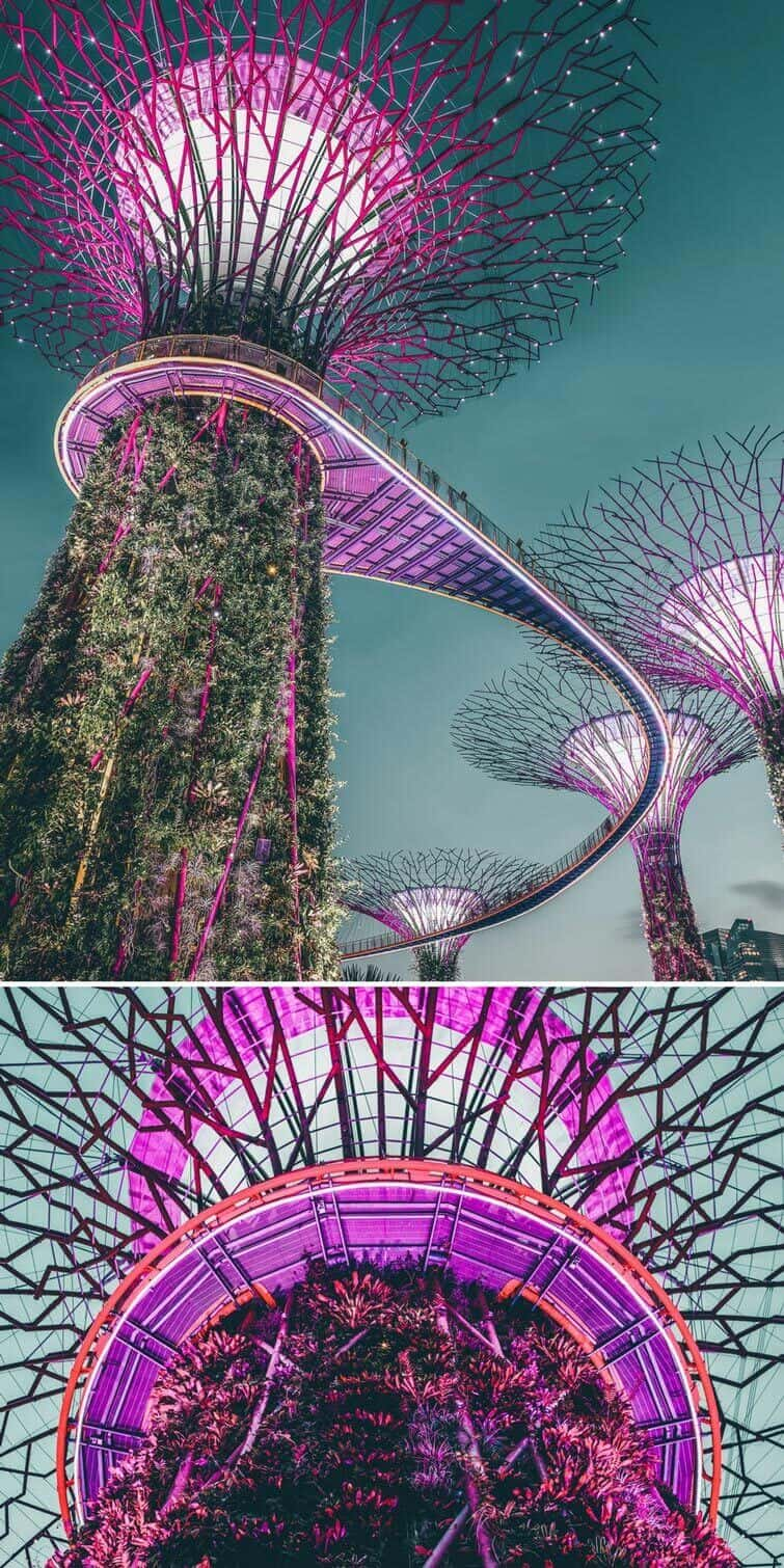 Gardens by the bay! Must visit places in Singapore! #singapore