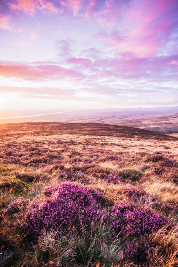 Pentland Hills in Scotland! Pictures of Scotland you will want to add to your Scotland road trip itinerary! Europe Bucket List - #avenlylanetravel #scotland #travel #scottishhighlands #unitedkingdom #hiking #adventuretravel #adventure #river #outdoors #travelitinerary #roadtrip #scottish - Read the full article at www.avenlylane.com
