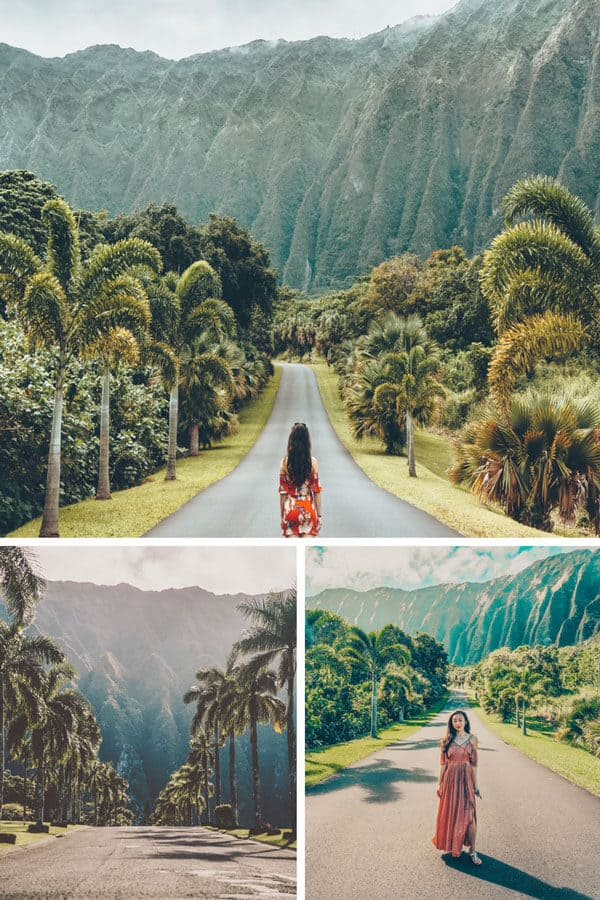 Check out the Best Things to do in Oahu Hawaii (You Probably Haven't Heard of). Check out the full post on www.avenlylanetravel.com #avenlylanetravel #hawaii #honolulu #hawaiianislands #oahu