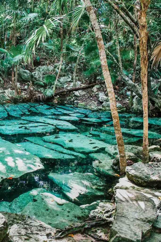 Cenote Azul. Cenotes Tulum Mexico!