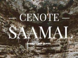 Cenote Saamal in Mexico!