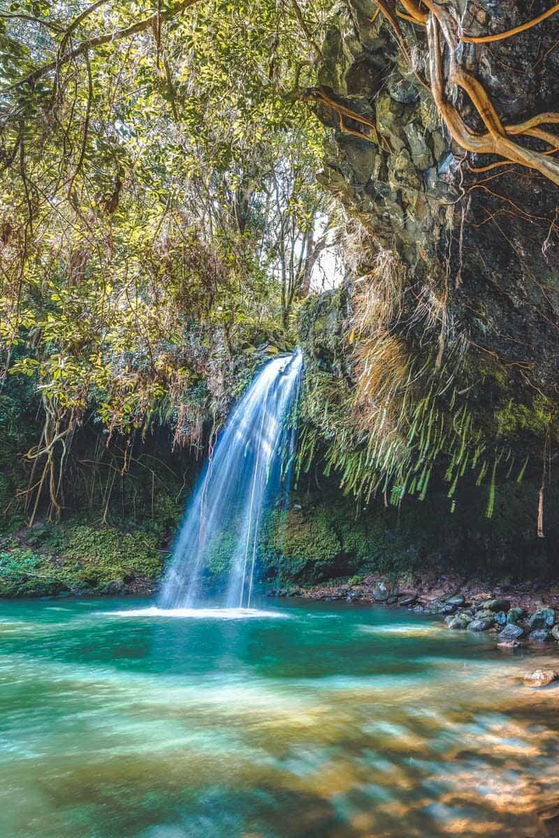Twin Falls in Maui