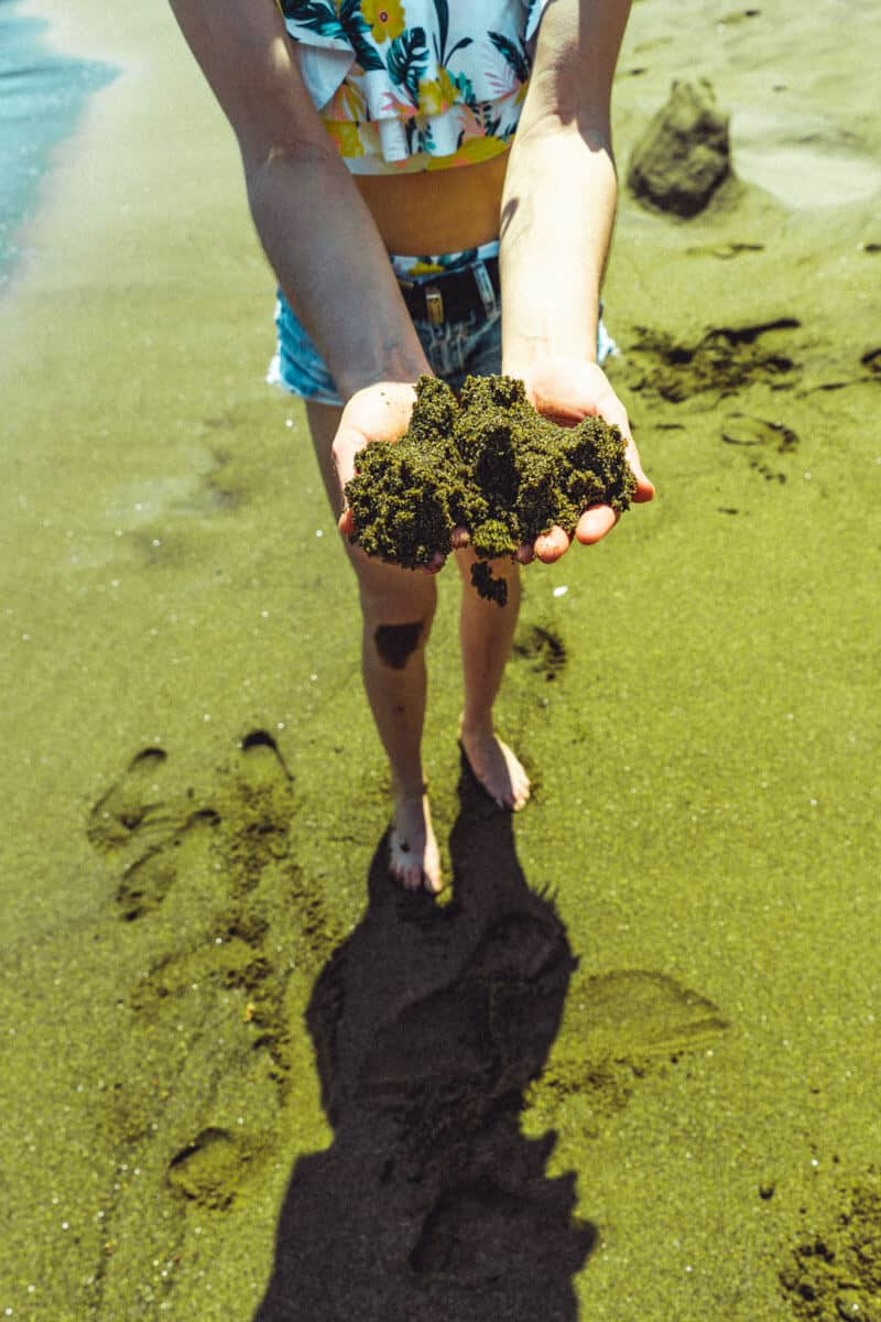 Green Sand Beach on the Big Island. One of the best big island beaches. Read 10 Unique Things You Must Know about Hawaii's Big Island on www.avenlylanetravel.com
