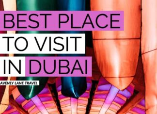 Dubai Garden Glow - Best place to visit in Dubai at night