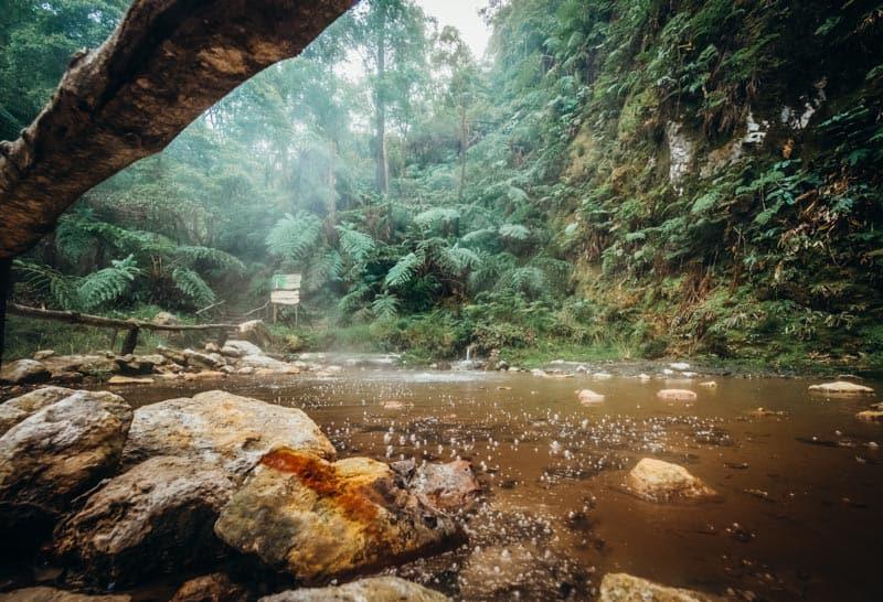 Natural Park Caldeira Velha near Ribeira Grande