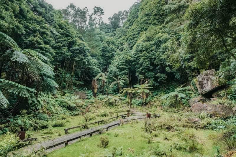 Natural Park Caldeira Velha